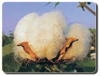 定做工作服知识之全棉面料优缺点比较